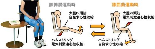 写真6:ハイブリッド訓練法